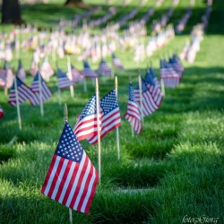 photography, memorial day, medford, oregon, remember, patriotic, Ealge Point VA Cemetery
